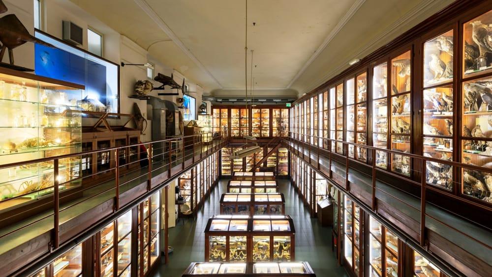 Guida Ai 10 Musei Di Palermo Da Vedere Assolutamente Di Notte